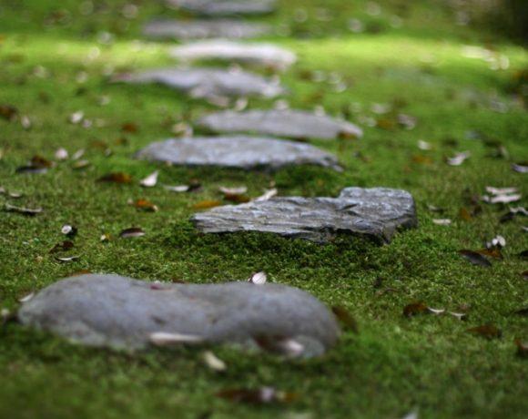 PinPoint Pathways